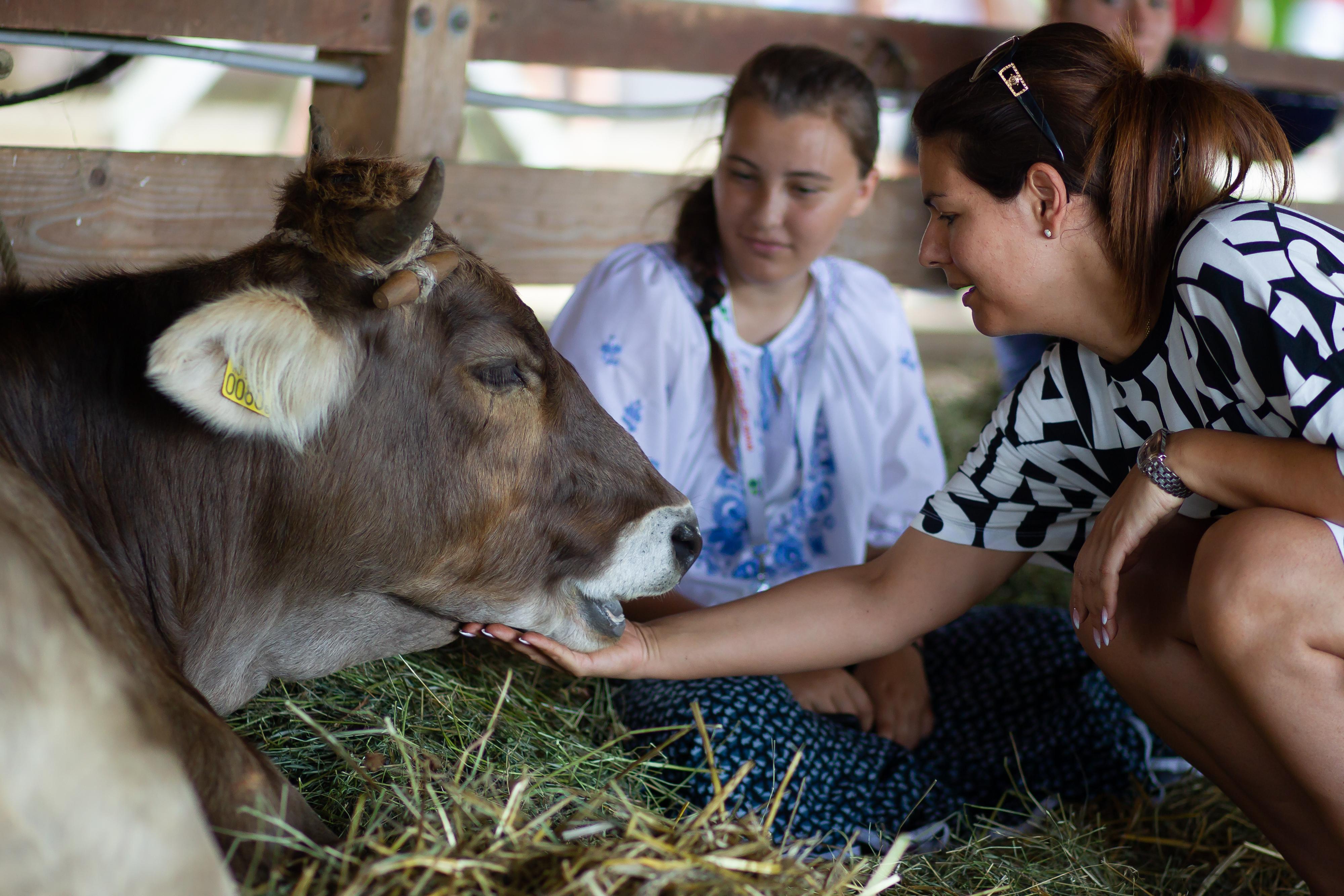 30 éves jubileumát ünnepli a Farmer Expo