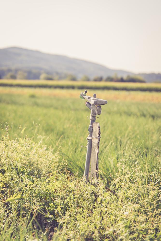 A nemzeti agrárgazdasági kamara kezdeményezte a tartósan vízhiányos időszak kihirdetését