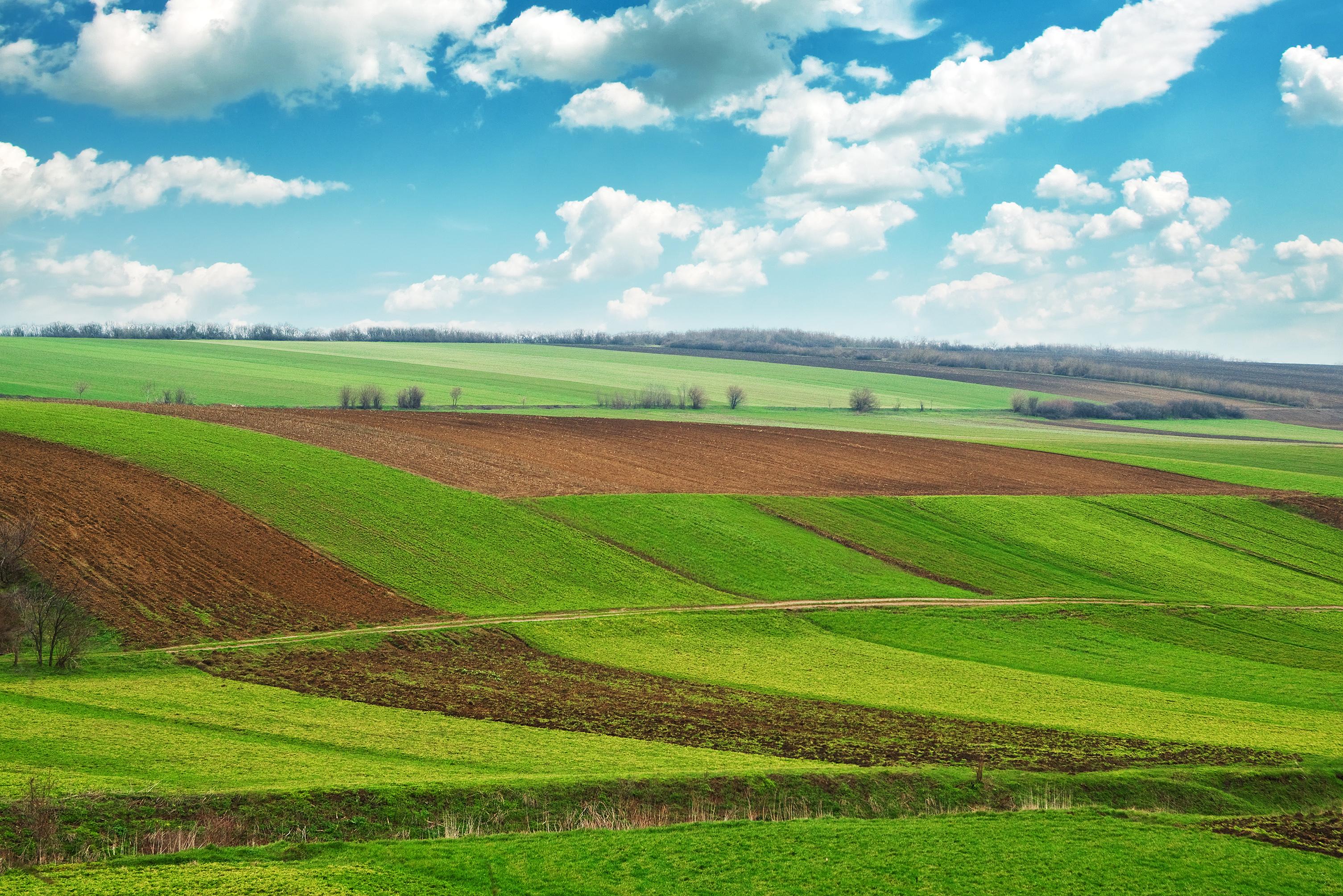 Jelenleg még több mint kétmillió földtulajdonost érinthetnek az osztatlan közös földtulajdonból fakadó hátrányok