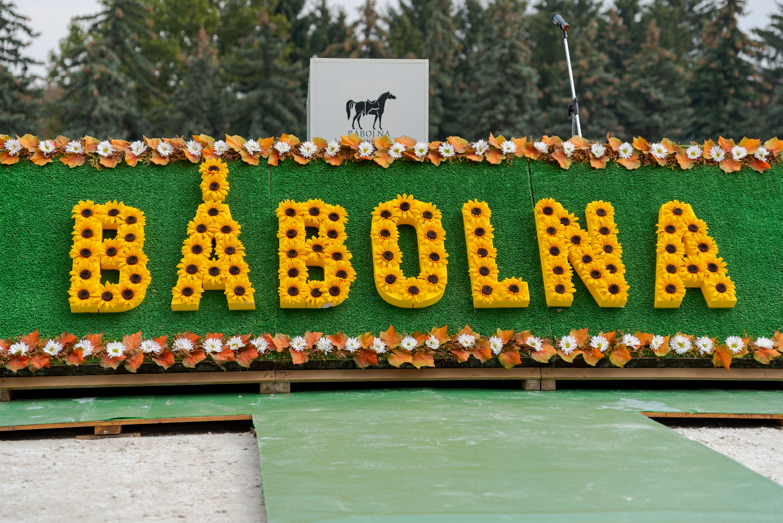 Babolna_20180905_001.jpg