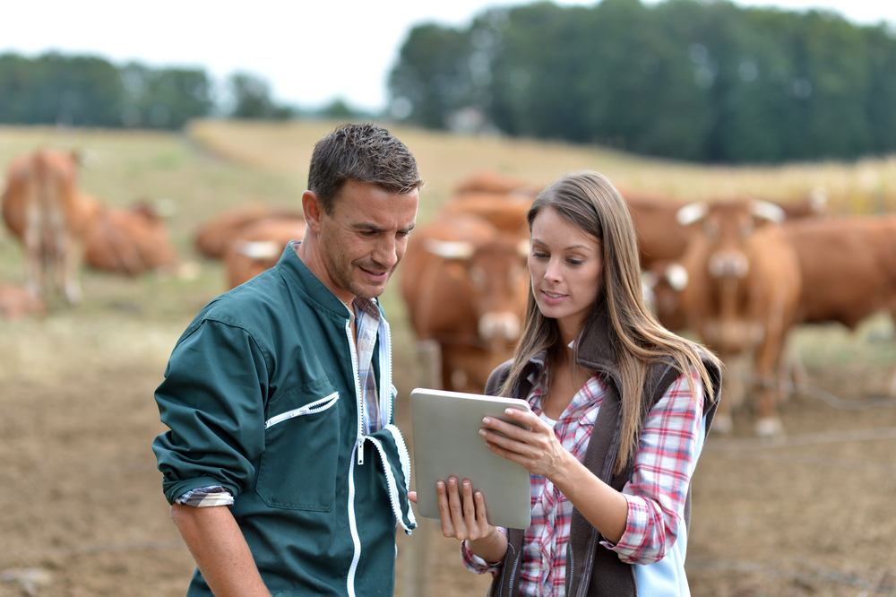3 Digitális farm menedzsment