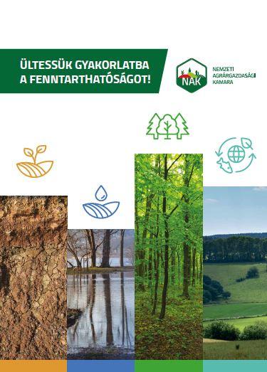 Ültessük gyakorlatba a fenntarthatóságot!